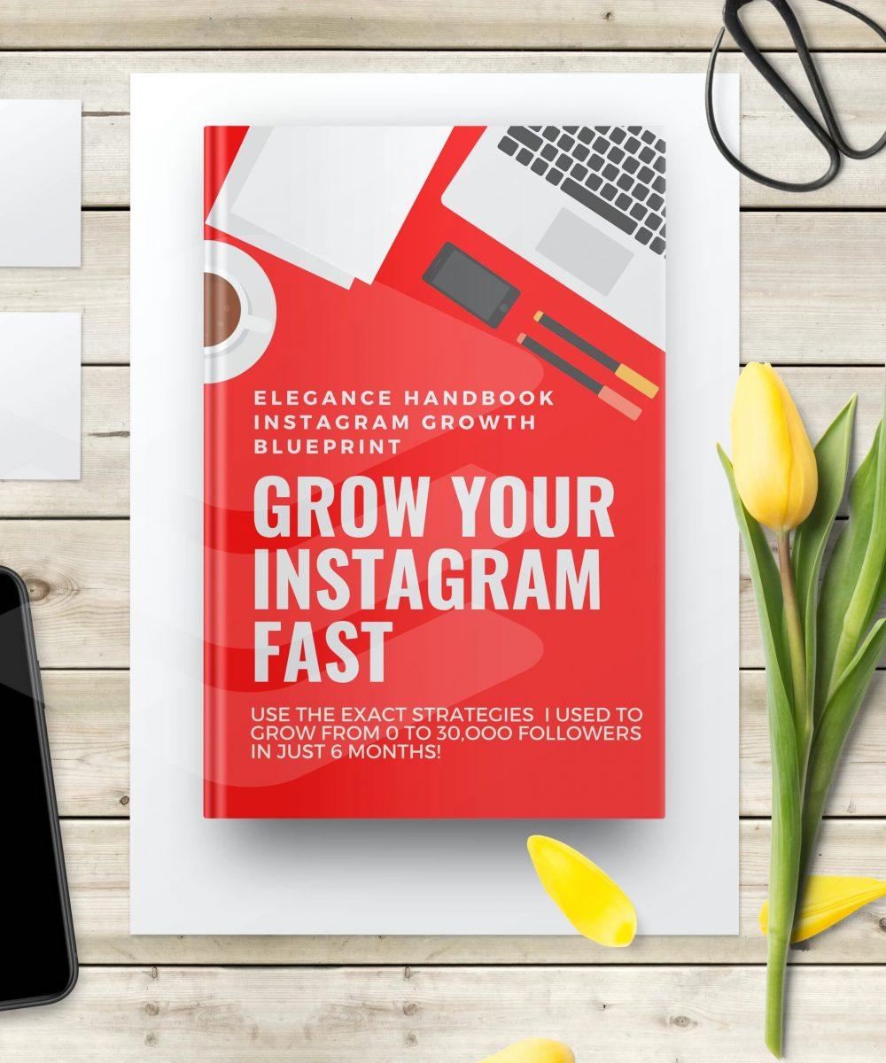Elegance Handbook Growth Blueprint II